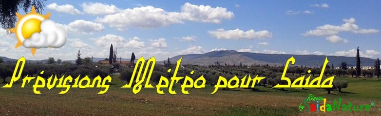 prévisions météo pour Saida, Algérie